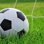 Campionato di serie D sospeso fino al 3 aprile